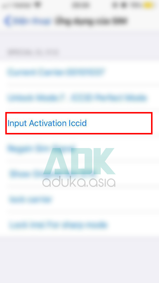Input Activation iccid
